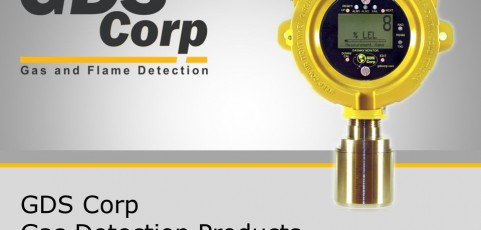 Know The Difference Between Gas Detector And Gas Monitor